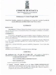 ordinanza 13 del 15 luglio 2016 - 1