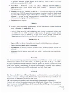 ordinanza 13 del 15 luglio 2016 - 2